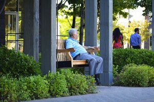 Man In Assisted Living Bench
