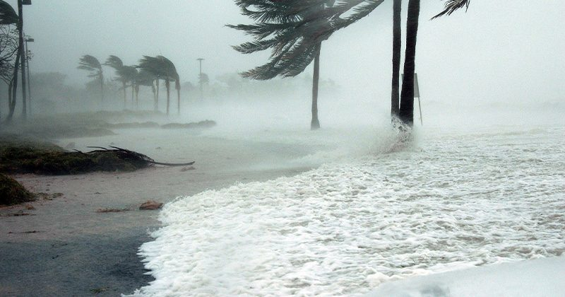 Are you prepared for hurricane season? Here are a few ways you can start