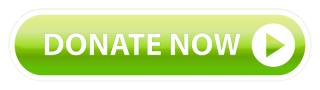 AdobeStock_35590258_DonateNow_Green